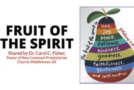 FRUIT OF THE SPIRIT - Veterans Outreach Ministries